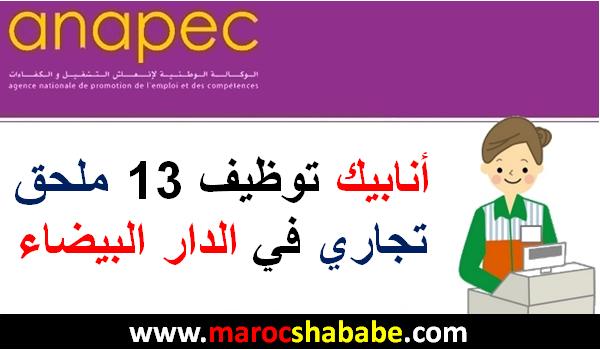 أنابيك توظيف 13 ملحق تجاري في الدار البيضاء