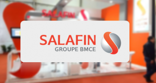 Salafin recrute plusieurs profils Contrat CDI